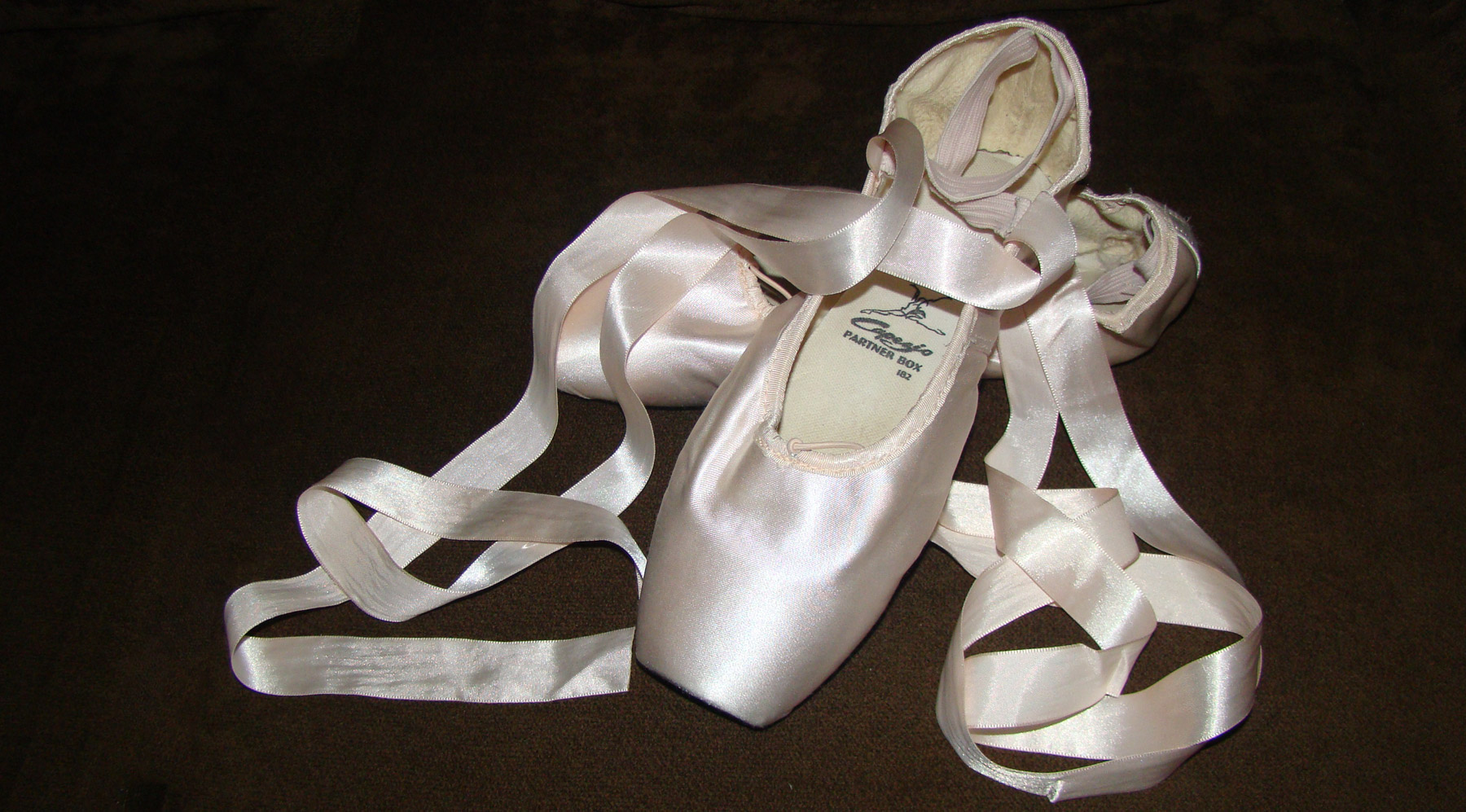 quem-pode-fazer-ballet