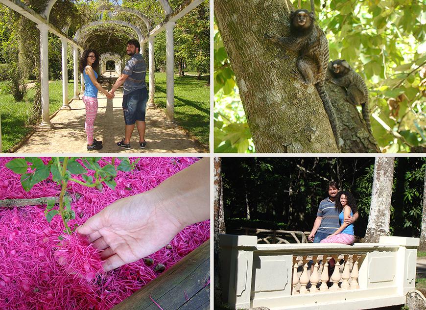 Passeio Barato no Rio de Janeiro: Jardim Botânico