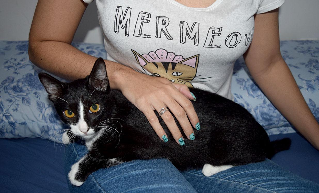 Vader-gato-adotado-blog-vai-menina