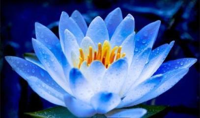 Духовное совершенствование человека связано с освобождением на пути Тантры