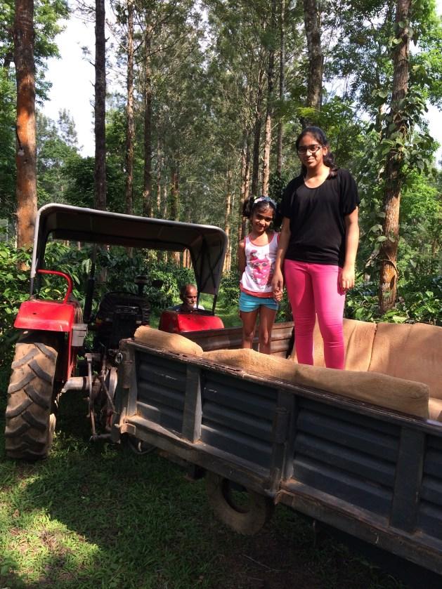 plantation trail