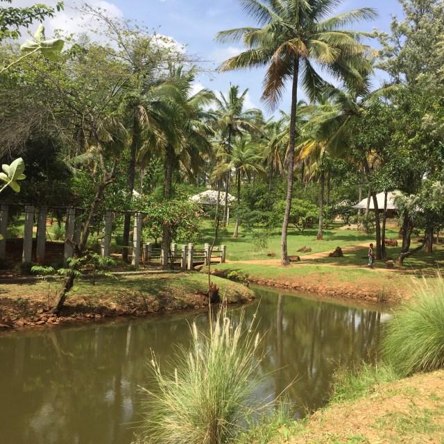 Shreyas is a sprawling property spread across 25 acres.