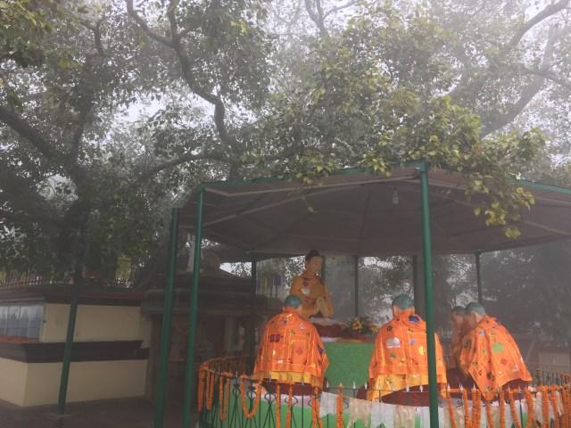 Sarnath is a Village