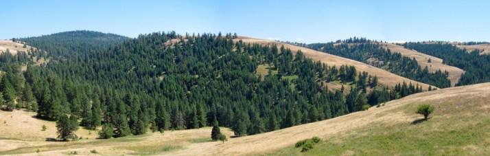 Battle Mountain, Oregon trail, creative commons, wie is de mol, vakantaseren, Oregon