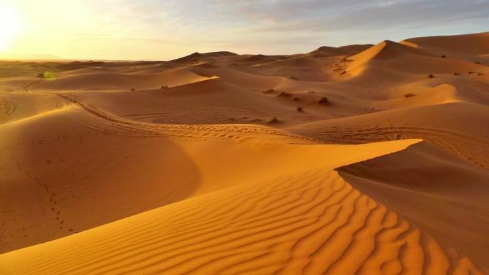 Erg chebbi, merzouga, Marokko, Woestijn, avontuur, SNP Natuurreizen