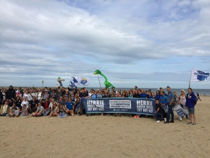 Beach Cleanup, Noordzee, strand