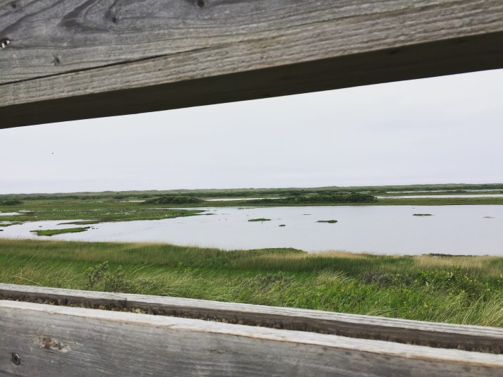 vlieland, Kroon's polder