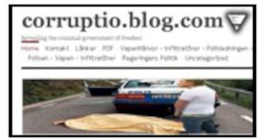 Svensk bloggare anhållen