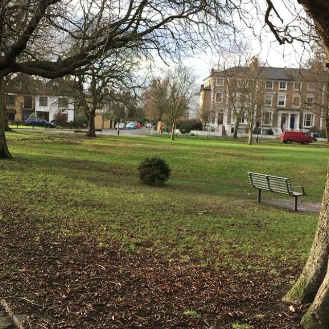 Tumbleweed on Ealing Common