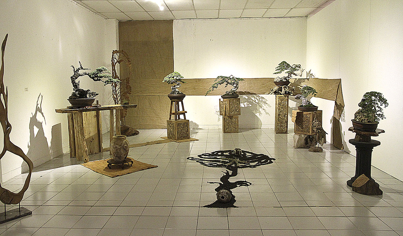 International Bonsai Art Culture Biennial 2014 Valavanis Bonsai Blog