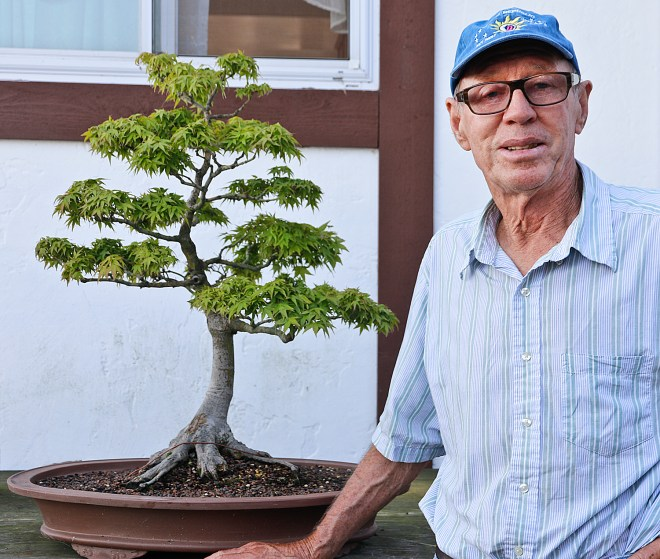 August 2015 Valavanis Bonsai Blog