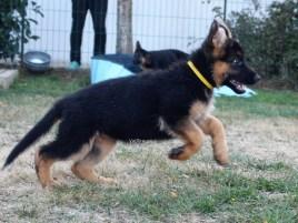 Olga, 2 mois et demi