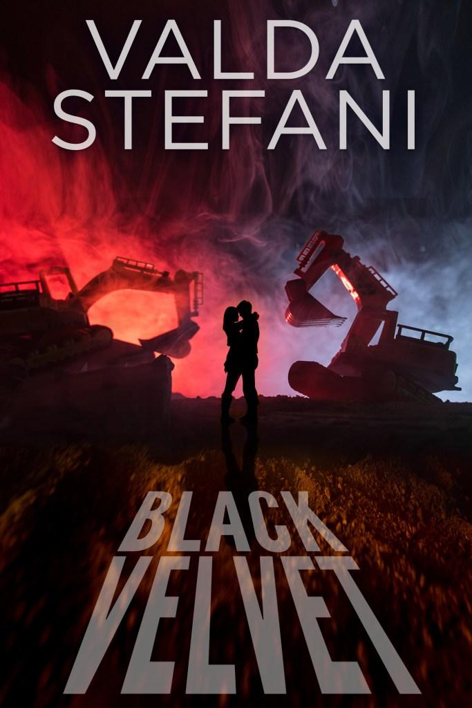Book cover for Black Velvet by Valda Stefani