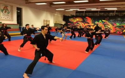 Magny le Hongre ►La Team Advance, club d'Arts Martiaux Artistiques et Acrobatiques
