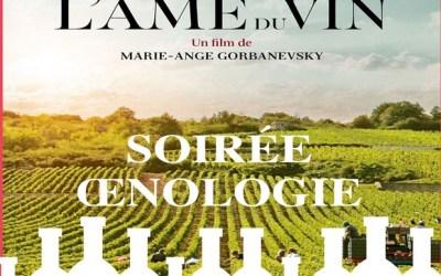 Soirée Oenologie : l'Âme du Vin et dégustation au Cinéma Studio 31 le 8 novembre 2019