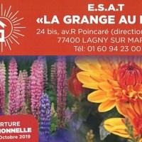 Vente de fleurs et bois de chauffage à l'ESAT « La Grange au Bois » de Lagny-Sur-Marne