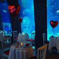 Dîner en amoureux avec les requins et les tortues à Sea Life Paris Val d'Europe