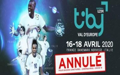 [ANNULÉ] 2è édition du Tiby Handball au gymnase Olympe de Gouges à Serris