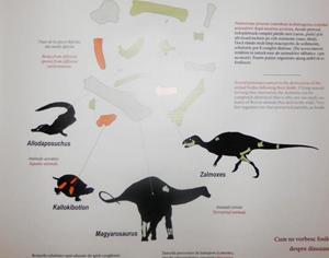 dinozauri panou