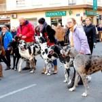 Llega el Porrat de Sant Antoni y las bendiciones de animales de la Calle Sagunto