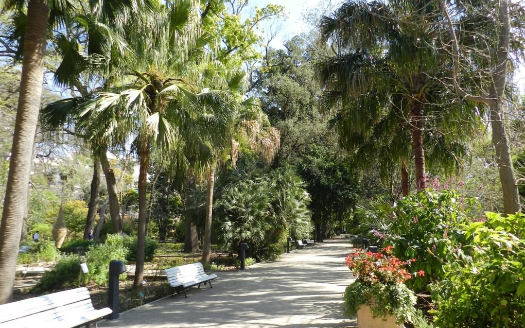 Sab as que el jard n bot nico de valencia es el m s for Jardin botanico bogota nocturno 2016
