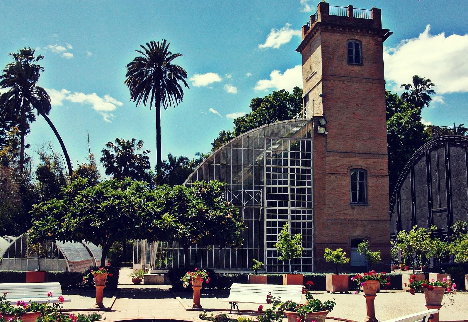 Sab as que el jard n bot nico de valencia es el m s - Jardin botanico valencia ...