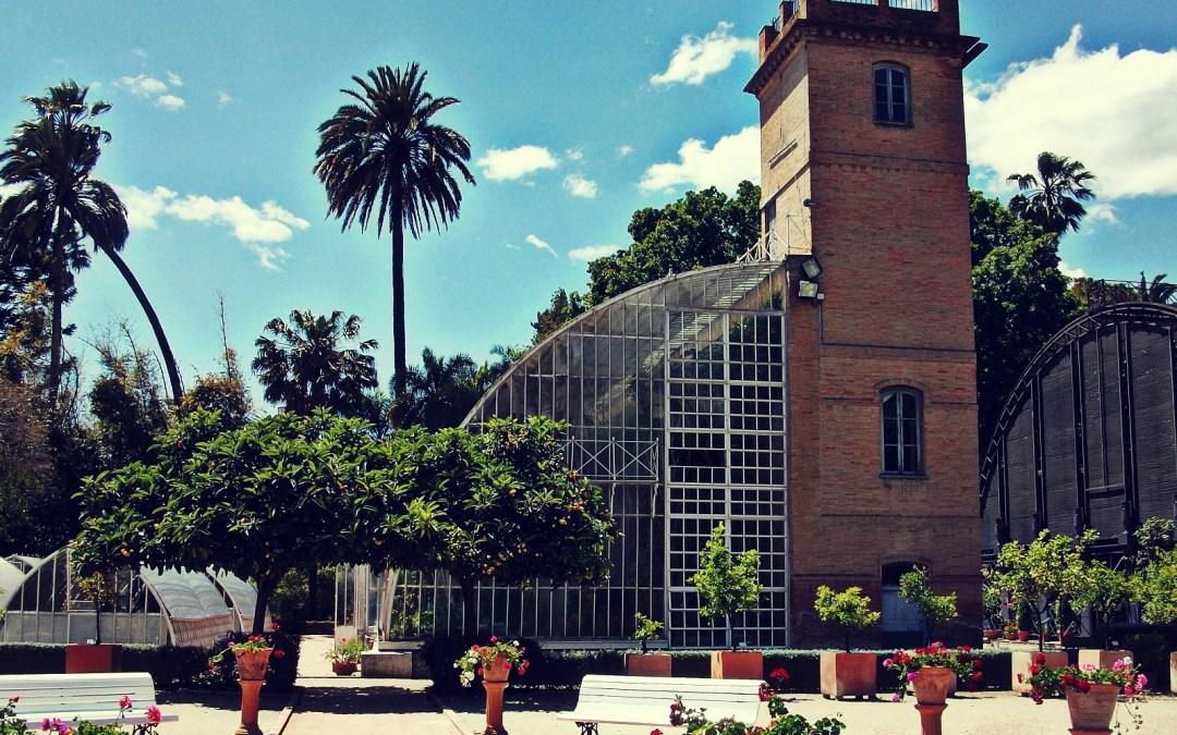 Jard n bot nico archivos valenciabonita for Jardin urbano valencia