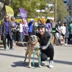 Paterna celebra la Fiesta de los Animales para facilitar adopciones de mascotas de protectoras