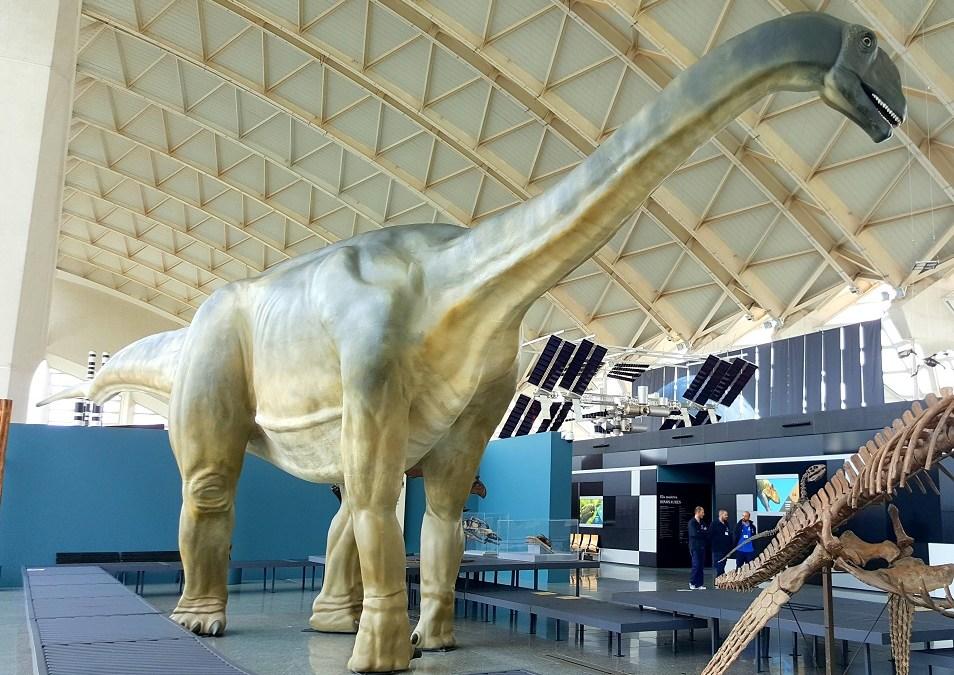 Una réplica del Losillasaurus y un esqueleto de Spinosaurus llegan al Museu de les Ciències