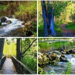 Las rutas de senderismo más bonitas de la Comunitat Valenciana