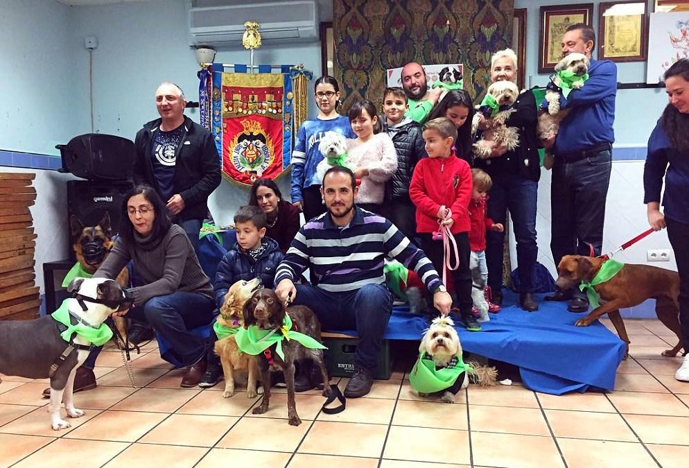 La Falla San Vicente-Amparo Iturbi crea una comisión fallera canina