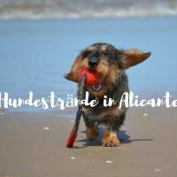 Hundestrände in Alicante 2019