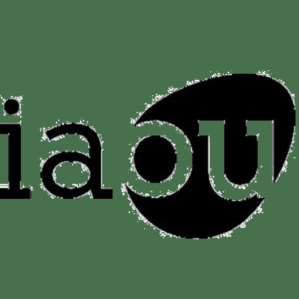 IAOU_mercado san valero