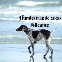Hundestrände in Alicante 2020
