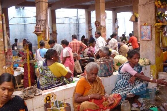 Proyecto de Fontilles en la India
