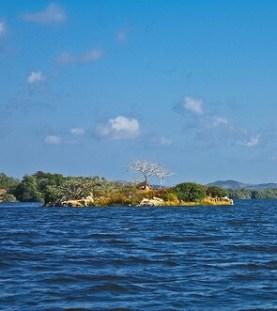La isla del Gallo