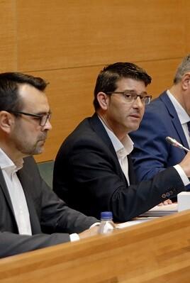 Pleno en la Diputación.