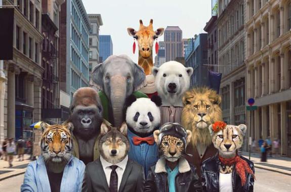 El león, el elefante y la jirafa son tres de los diez animales más carismáticos que se encuentran en peligro de extinción. / Zoo Portraits