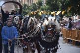 bendición de la fiesta de san Antonio Abad en València 20200117_094858 (119)