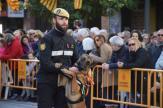 bendición de la fiesta de san Antonio Abad en València 20200117_094858 (72)