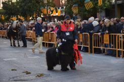 bendición de la fiesta de san Antonio Abad en València 20200117_094858 (78)