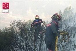 bomberos (INT)