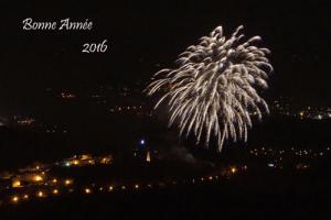 bonne-année-2016-gassin-500