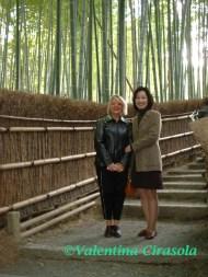 Kyoto-BambooGarden
