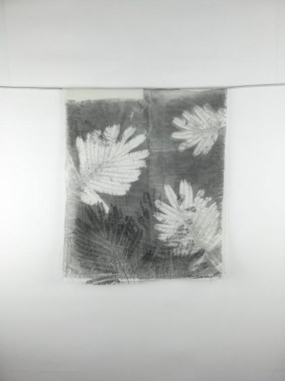 valentina-semprini-monoprint (1)