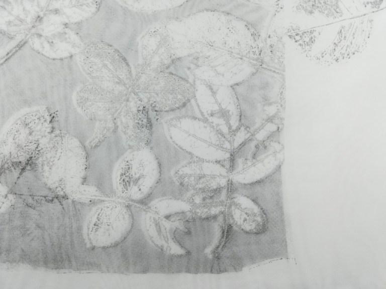 valentina-semprini-monoprint (100)