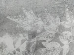 valentina-semprini-monoprint (21)