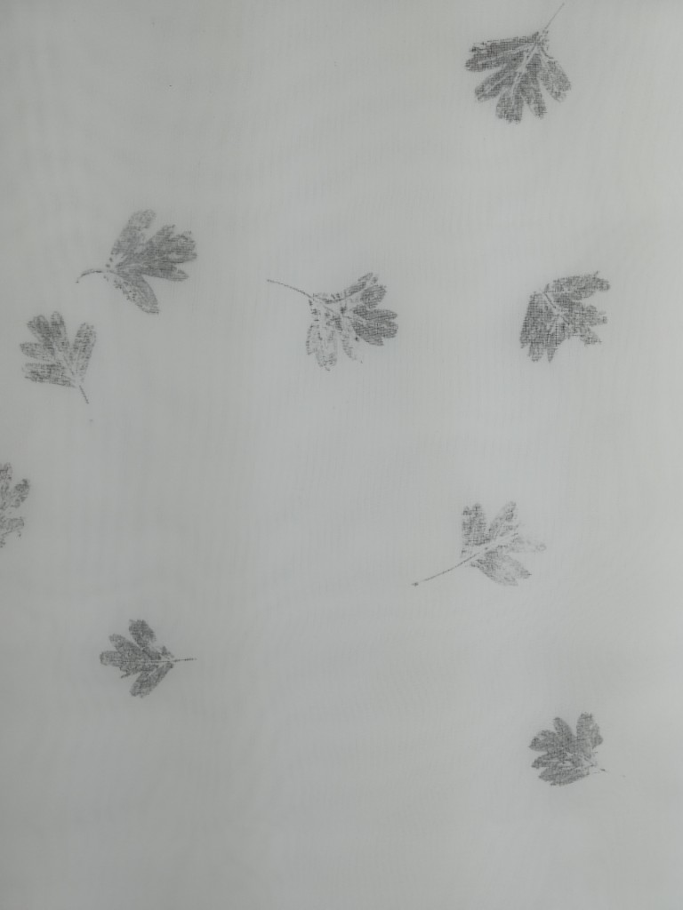 valentina-semprini-monoprint (55)
