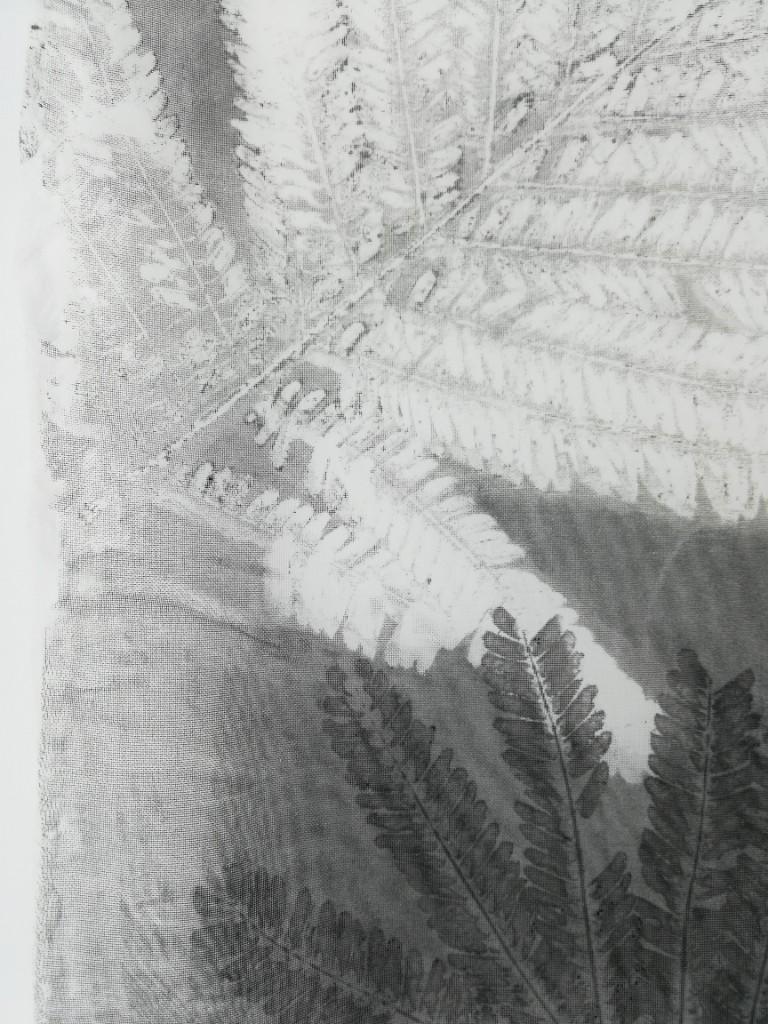 valentina-semprini-monoprint (7)