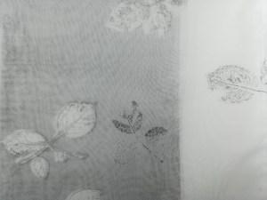 valentina-semprini-monoprint (93)